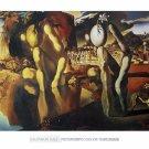 Metamorphosis Narcissus - Salvador Dali Poster