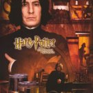 Harry Potter and The Chamber of Secrets - Professor Snape Movie Poster