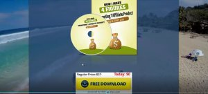Make Money Without Selling with PLR