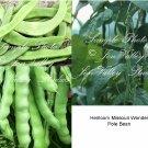 75 Seeds Missouri Wonder Pole Bean snap or dry Tender flavorful multi purpose Heirloom Natural