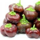 20 Seeds Miniature Chocolate Bell Pepper Vegetable Market or Home Garden Organic!