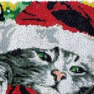 Rug Making Latch Hooking Kit | Cat in Christmas Hat (85x58cm blank canvas)