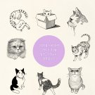 cat sketch book cat drawing book catlover