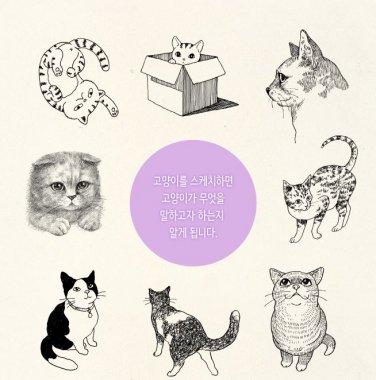 cat sketch book cat drawing book catlover