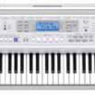 Casio CTK810 Full Size 61-Key Keyboard  www.tmscad.ecrater.com