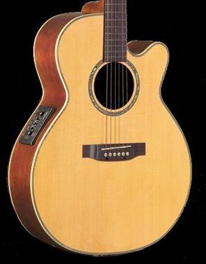 Takamine EG540SSC NEX Gloss Natural A/E Guitar Solid Top/Back FREE SHIPPING www.tmscad.ecrater.com