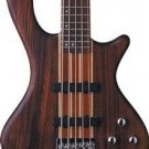 Washburn T25NMK Natural Matte Bass Neck Thru Mahogany FREE SHIPPING www.tmscad.ecrater.com