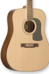 Washburn D10SDL Natural w/Case FREE SHIP Solid Spruce Top www.tmscad.ecrater.com