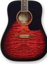Washburn D10QSB Quilted Maple Sunburst Acoustic w/Case FREE SHIP  www.tmscad.ecrater.com