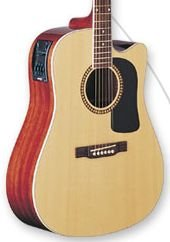 Washburn D10SCE Natural Acoustic/Electric  w/Case FREE SHIP WT82 Pre/Tuner www.tmscad.ecrater.com