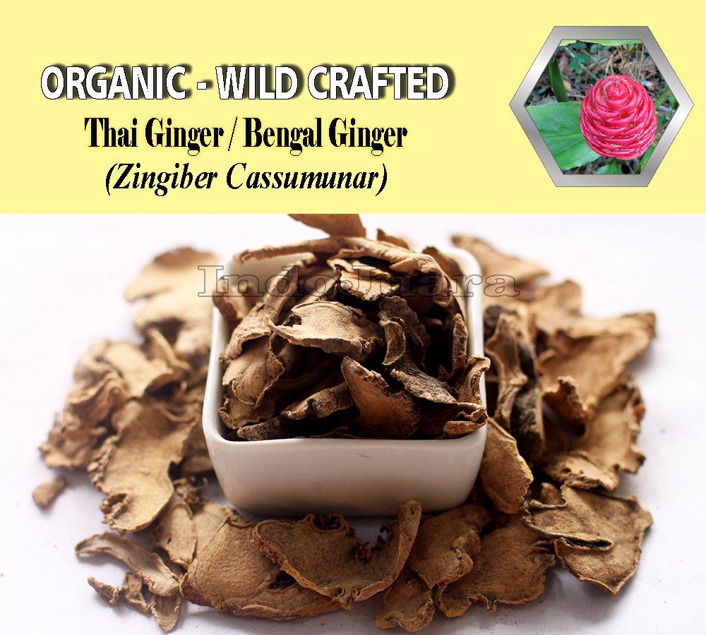 8 Oz/227g Cassumunar Ginger Bengal Ginger Thai Ginger PLAI Zingiber Cassumunar Organic Wild Crafted