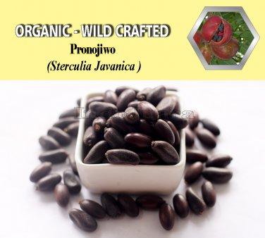 1 Lb/454g PRONOJIWO Sterculia Javanica Organic Dried Herbs Wild Crafted Aphrodisiac