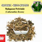 8 Oz / 227g Madagascar Periwinkle Catharanthus Roseus Organic Wild Crafted 100% Fresh