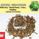 8 Oz / 227g Wild Celery Marsh Parsley Celery Smallage Apium Graveolens Organic Wild Crafted