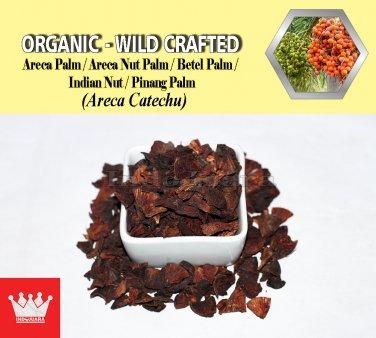2 Lb / 908g BETEL NUTS Areca Palm Areca Nut Palm Betel Palm Pinang Palm Areca Catechu FRESH