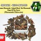 3 Oz / 84g Common Mussaenda Ashanti Blood Red Mussaenda Mussaenda Pubescens Organic Wild