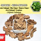 3 Oz / 84g Greater Galangal Siamese Ginger Java Galangal Alpinia Galanga Organic Wild Fresh
