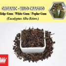 8 Oz / 227g Ridge Gum Fruits White Gum Poplar Gum Eucalyptus Alba Organic Wild Crafted Fresh