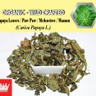 8 Oz / 227g Caesarweed Congo Jute Bur Mallow Aramina Urena Weed Urena Lobata Organic Wild