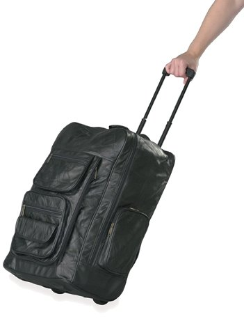 Super Deluxe Backpack with Rolling Cart