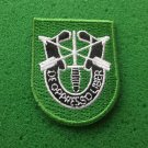 10TH Special Forces Group Flash Patch