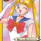 Sailor Moon Graffiti 6 #217