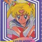Sailor Moon Cardzillion 24