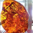 208.7 Gr. 97 x 75 x 58 mm Orange Amber Resin Rock Stone w/ Real Insect Inclusion