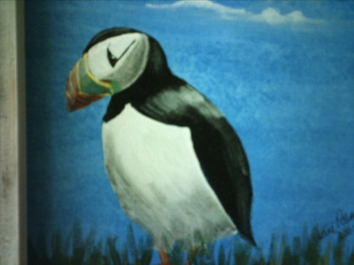 "LONELY PUFFIN.. original art..  9 x 12""  framed"