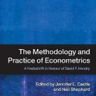 The Methodology and Practice of Econometrics : A Festschrift in Honour of...
