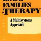 Black Families in Therapy : A Multisystems Approach by McGoldrick and Nancy...