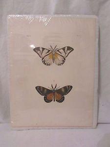 Butterfly Antique Vintage Lithograph Print Vol 3. PL. V. Nature Pictures