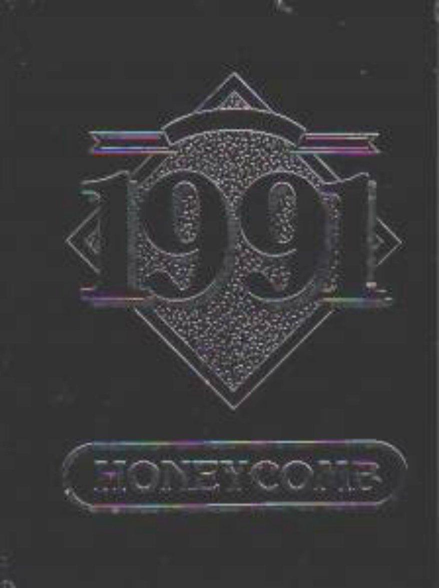 1991 Brethren Elementary Junior High School Yearbook CA