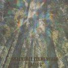 1995 Greentree Elementary School Eagles Yearbook Irvine California