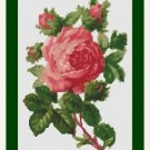 Cross-Stitch Embroidery Color Pattern with DMC codes - Beautiful Victorian Rose