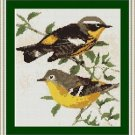 Cross-Stitch Embroidery Color Pattern with DMC codes - Wild Canaries