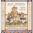 Primitive Country Folk Art Kitchen Refrigerator Magnet - Vintage Fruit Label