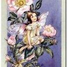 Beautiful Fun Decor Design Collectible Kitchen Fridge Magnet -The Wildrose Fairy