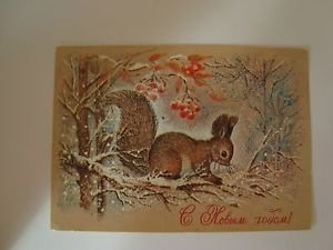 Postcard - USSR, theme of the New Year, Nature, Squirrel, 1981