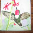 Original miniature watercolor painting Hummingbird