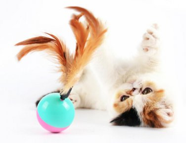 Cute Pet Cat Kitten Training Funny feather plume Play Toy Tumbler Ball Products Gift
