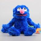 Sesame Street Hand Puppet Plush Toys Cookie Monster Ernie Big Bird Grover Stuffed (Grover)