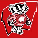 Wisconsin Badgers flag with us stars stripes 3ftx5ft Banner 100D Polyester Flag (STC)