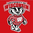 Wisconsin Badgers flag with us stars stripes 3ftx5ft Banner 100D Polyester Flag (STG)