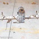 1986 Alfa Romeo Spider Veloce 2.0 Complete Rear End Differential and Axles