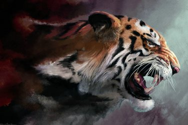 The Angry Tiger Home Deco Cool Art Print Silk Fabric Poster 24x36inch Brand New