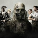 The Walking Dead TV Zombies Large Art Silk Poster Printing 56x24inch New