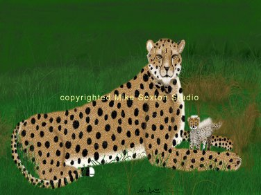 Life Moves Too Fast (Cheetah Print)