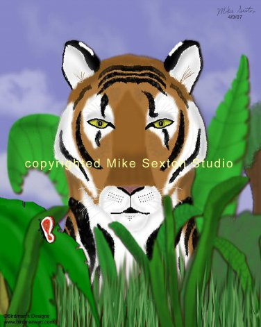 Tiger Peekaboo Print