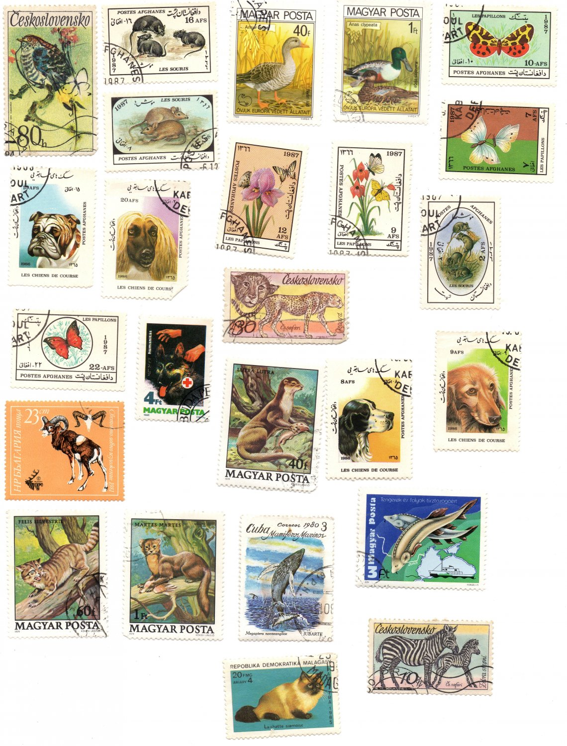 Postage stamps from USSR and the countries of the socialist camp